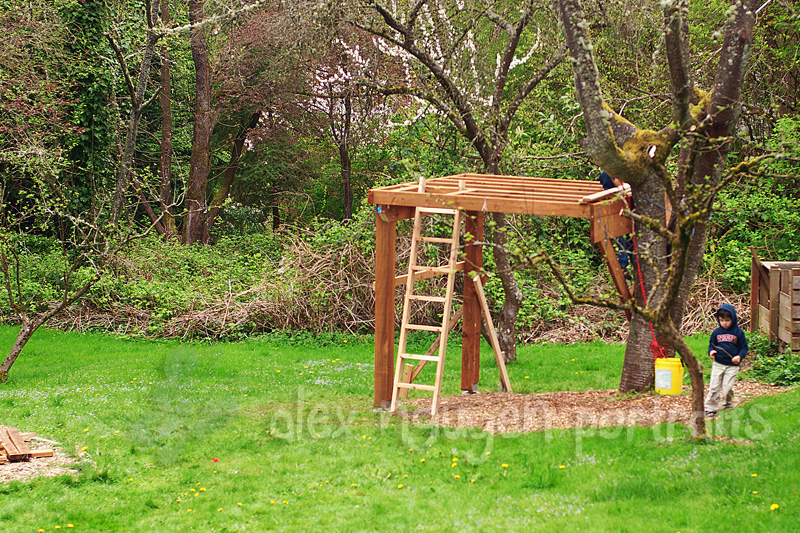 Building a treehouse seattle area lifestyle photographer for Small tree house