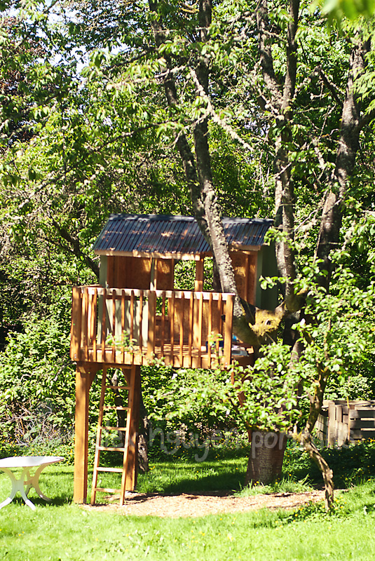 Backyard Treehouse Builders : Building a Treehouse} Seattle Area Lifestyle Photographer ? Alex