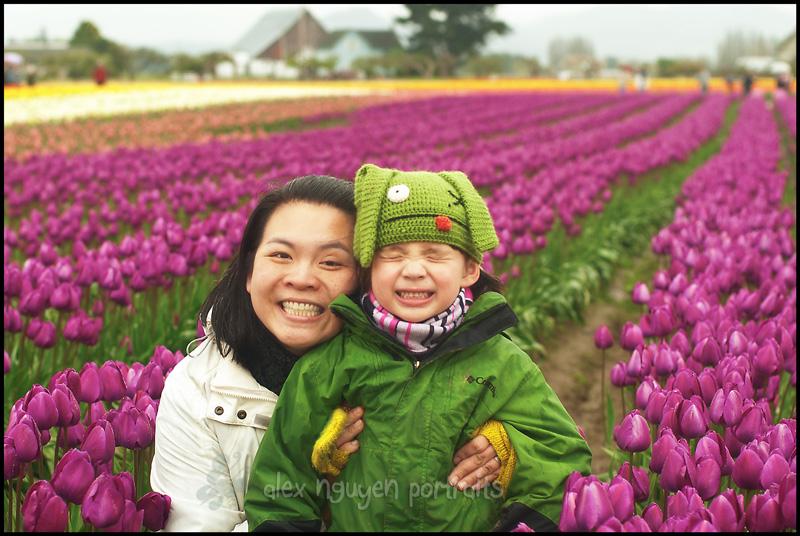 tulip10WM