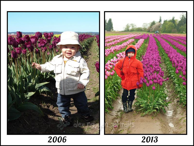 tulipthenandnow